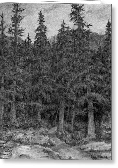 Enter The Forest Greeting Card by David King