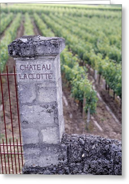 Chateau Greeting Cards - Entrance Of A Vineyard, Chateau La Greeting Card by Panoramic Images
