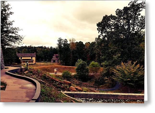 Environment  Greeting Card by 2141 Photography