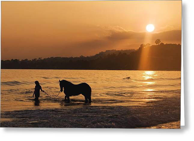 Equine Beach Time Greeting Card by Nick Sokoloff