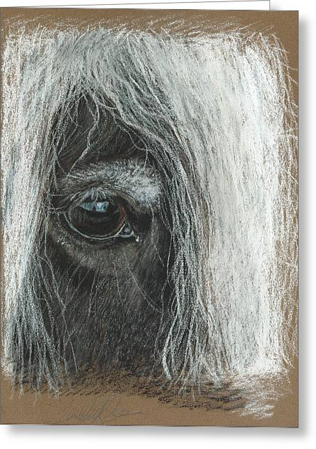 Equine Eye Detail Greeting Card by Terry Kirkland Cook