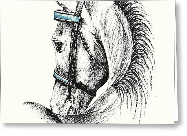 Equine Sketches Greeting Card by JAMART Photography