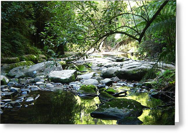 Erskine River Greeting Card