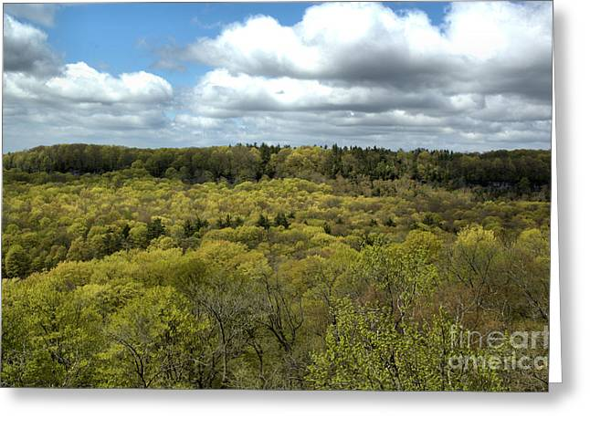 Escarpment Spring 1 Greeting Card