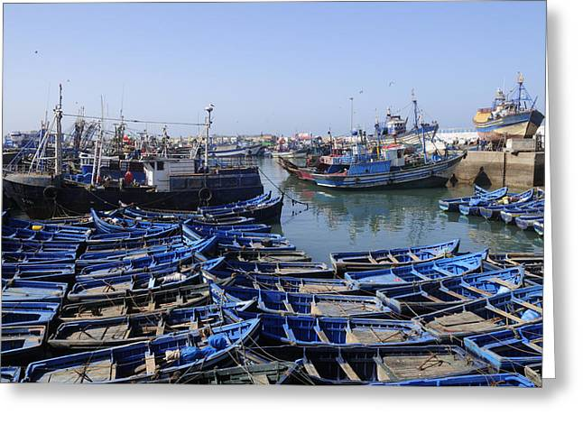 Essaouira Morocco Greeting Card by Liz Pinchen