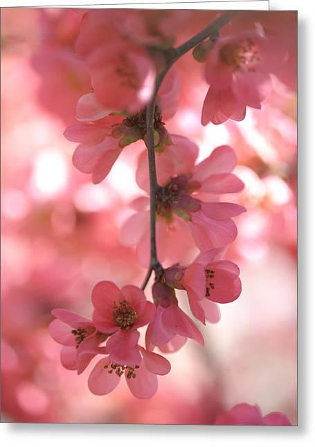 Essence Of Beauty Greeting Card by Jenny Rainbow
