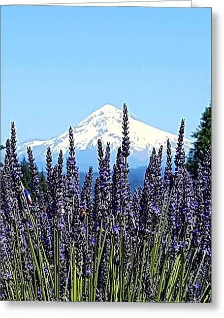 Essence Of Lavender Greeting Card by Debra Kaye McKrill