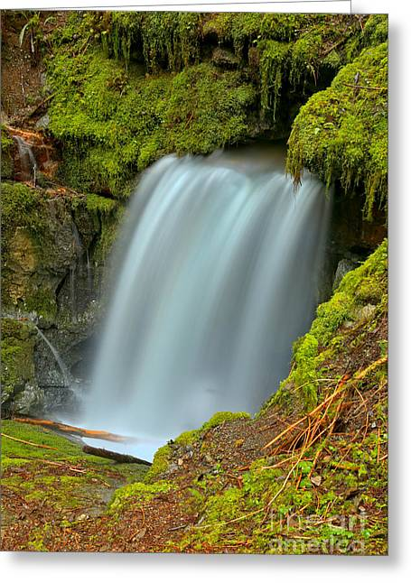 Eternal Fountain Bc Greeting Card by Adam Jewell