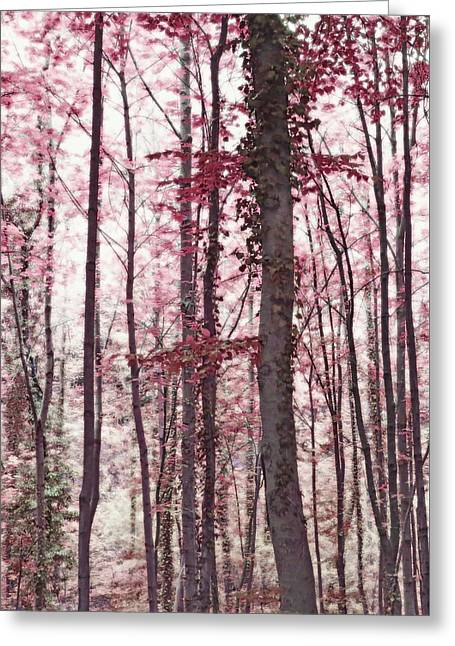 Ethereal Austrian Forest In Marsala Burgundy Wine Greeting Card by Brooke T Ryan