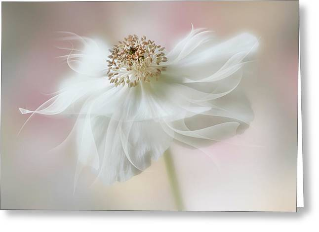 Ethereal Beauty Greeting Card