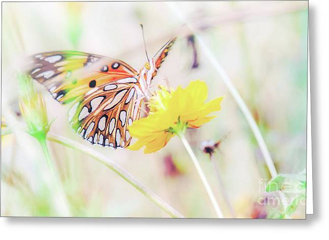 Greeting Card featuring the photograph Ethereal Butterfly by Andrea Anderegg