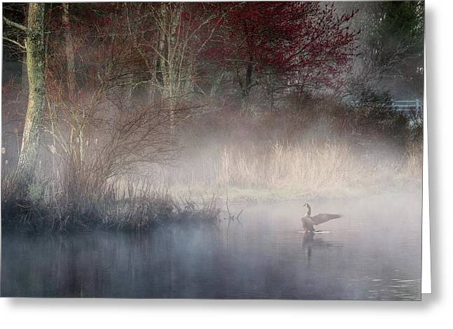 Greeting Card featuring the photograph Ethereal Goose by Bill Wakeley