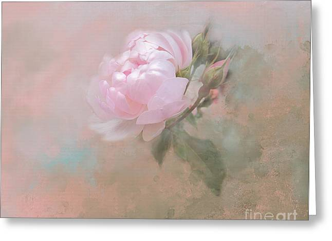 Ethereal Rose Greeting Card