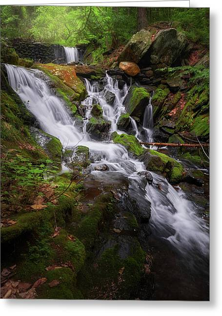 Greeting Card featuring the photograph Ethereal Solitude by Bill Wakeley