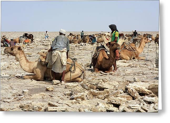 Ethiopian Salt Flats Greeting Card