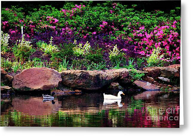 Ethreal Beauty At The Azalea Pond Greeting Card by Tamyra Ayles