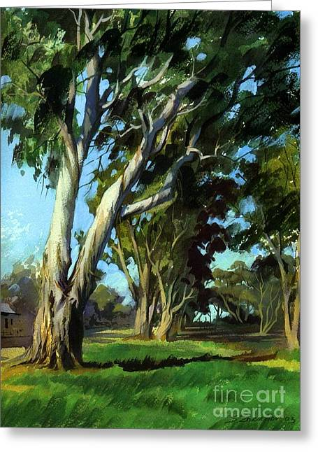 Eucalyptuses Greeting Card