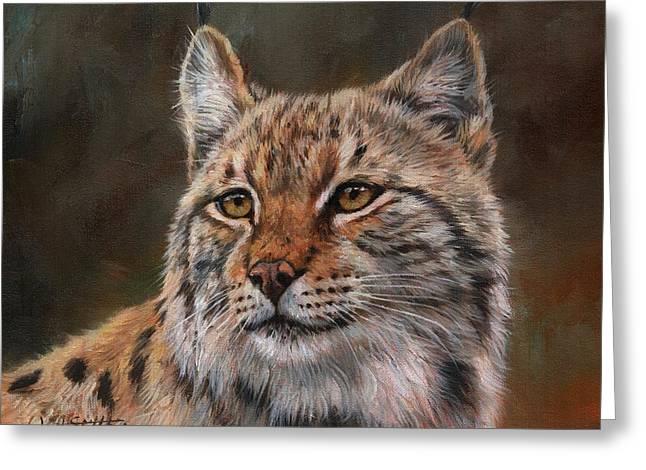 Eurasian Lynx Greeting Card by David Stribbling