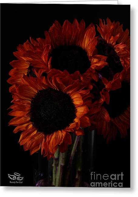 Greeting Card featuring the photograph Even In The Darkness by Beauty For God