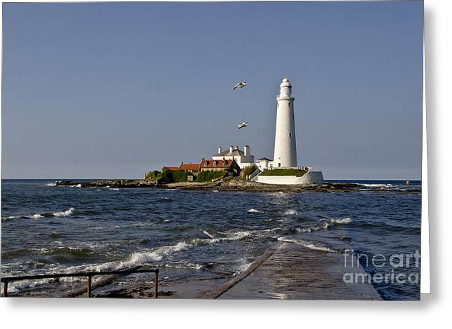 Evening At St. Mary's Lighthouse Greeting Card