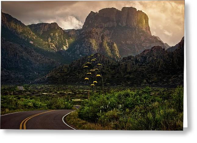 Evening At The Chisos Greeting Card