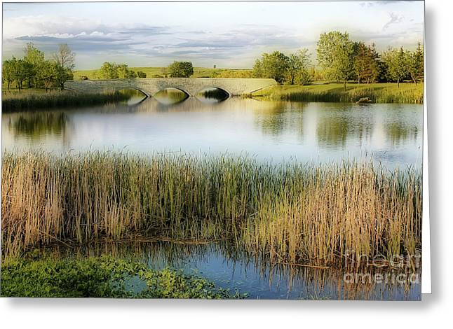 Evening Calm Greeting Card by Teresa Zieba