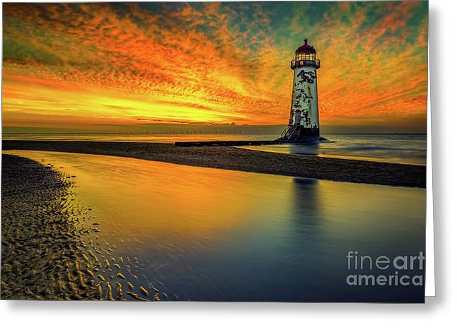 Evening Delight Greeting Card by Adrian Evans
