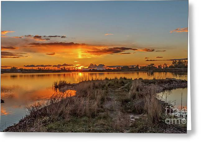 Greeting Card featuring the photograph Evening Delight by Robert Bales