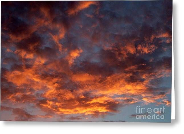 Evening Flames B Greeting Card by Ciro Pignalosa