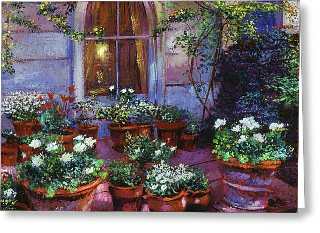 Evening Garden Patio Greeting Card by David Lloyd Glover
