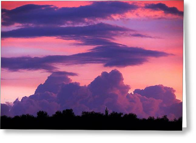 Greeting Card featuring the photograph Evening Glow by Mistys DesertSerenity