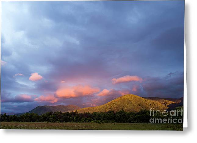 Greeting Card featuring the photograph Evening In Cades Cove - D009913 by Daniel Dempster
