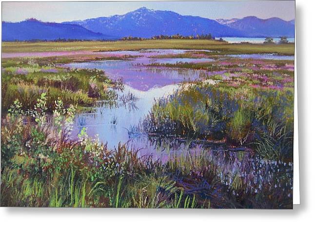 Evening In The Marsh Greeting Card by Bonita Paulis