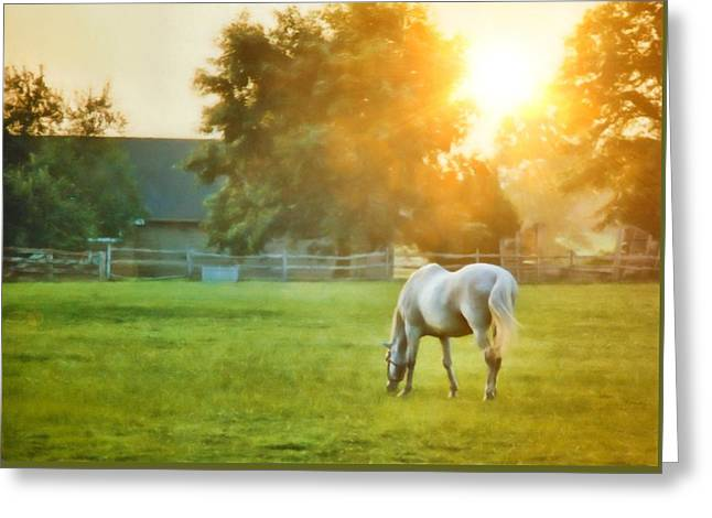 Evening Mist Greeting Card by JAMART Photography