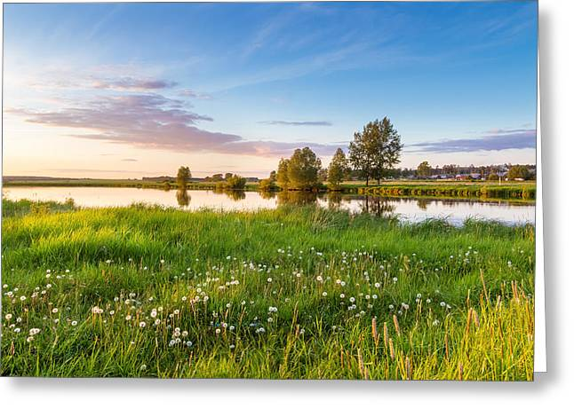 evening on the river with a field of dandelions, Russia, Ural Greeting Card by Alex Rudny