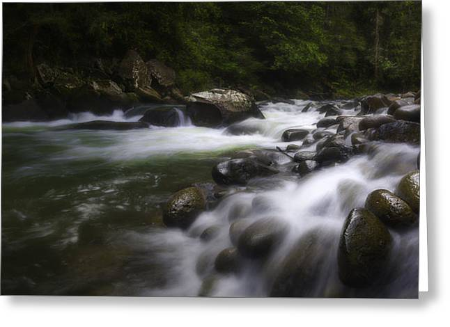 Evening On The Sarapiqui River Greeting Card