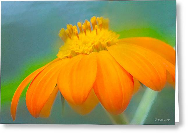 Evening Orange Greeting Card Greeting Card by William Martin