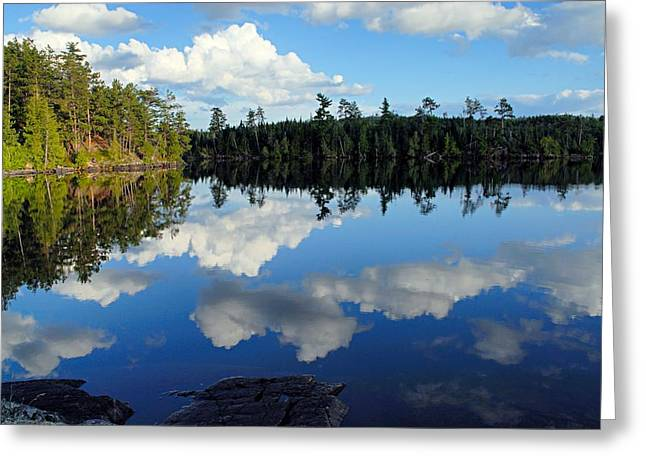 Evening Reflections On Spoon Lake Greeting Card by Larry Ricker