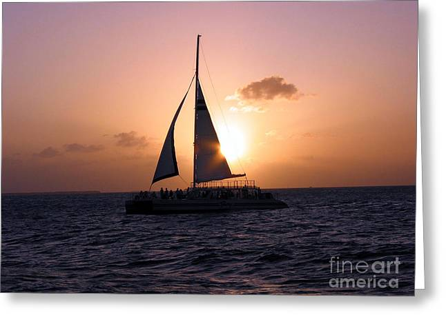 Evening Sail Greeting Card by Ania M Milo