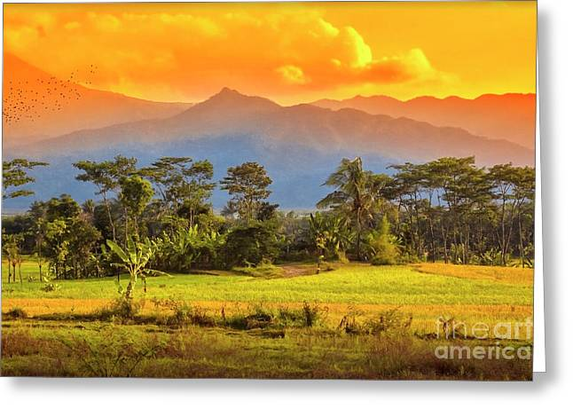 Greeting Card featuring the photograph Evening Scene by Charuhas Images