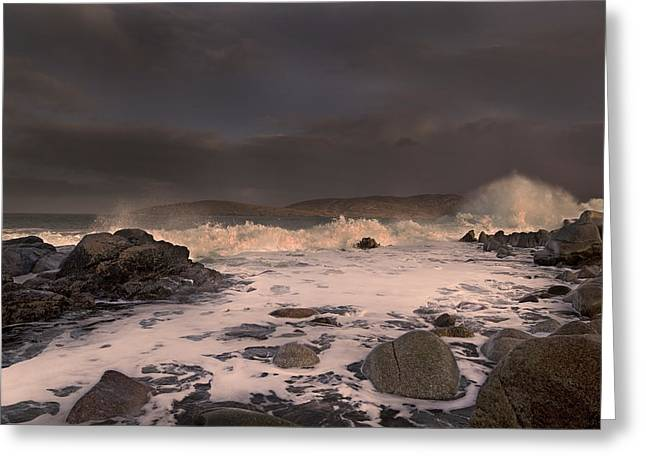 Evening Seascape  Greeting Card