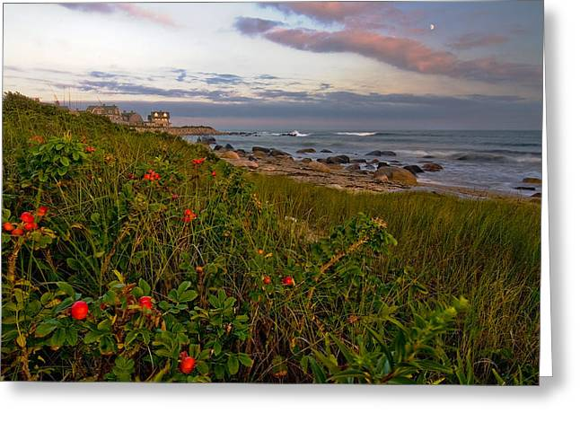 Seacape Greeting Cards - Evening Seascape Greeting Card by Stephen Sisk