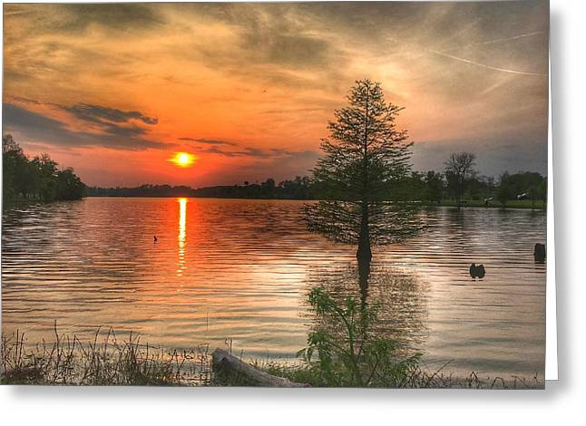 Evening Serenity  Greeting Card