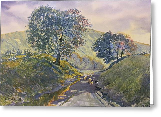 Evening Stroll In Millington Dale Greeting Card