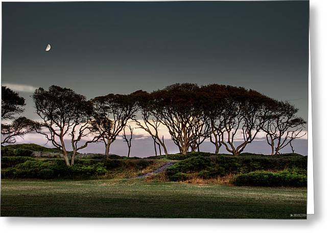 Dusk At Fort Fisher Greeting Card