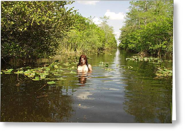 Greeting Card featuring the photograph Everglades Beauty One by Lucky Cole