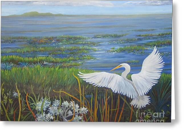 Everglades Egret Greeting Card by Anne Marie Brown