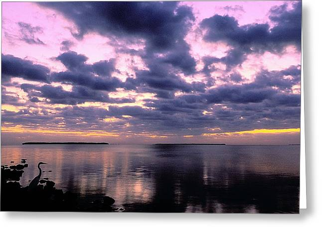 Everglades Sunrise Greeting Card by Alan Lenk