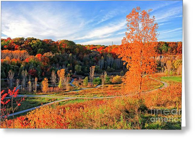 Greeting Card featuring the photograph Evergreen Brick Works Autumn by Charline Xia