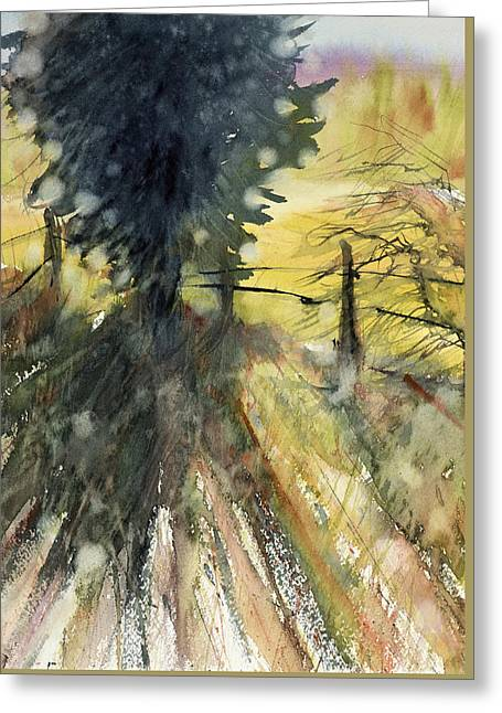 Evergreen Greeting Card by Judith Levins